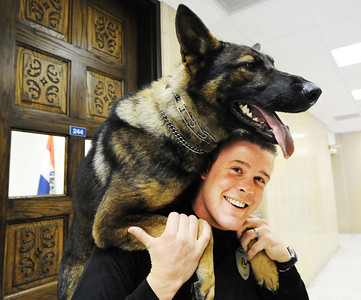 Joplin Police Department K-9 handler Jeremy Bland holds Pax, a 2-year-old German shepherd over his shoulder Monday afternoon, Jan. 6, 2014, at the department's main offices in downtown Joplin. Globe | T. Rob Brown