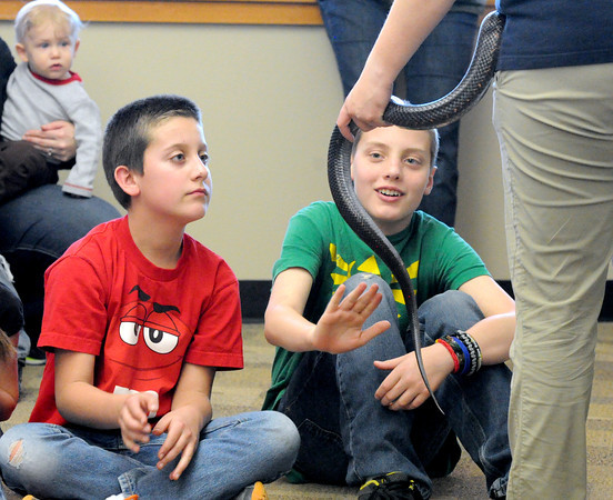 Eleven-year-old Riley Bowers, left and Elisha Bender, right, pet a black rat snake held by Missouri Department of Conservation's Lauren Copple during a presentation about snakes on Tuesday at Wildcat Glades. Globe | Laurie Sisk